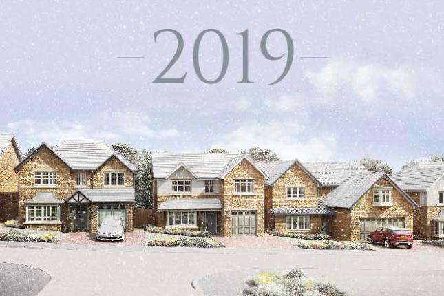 Новогодишни промоции на имуществени застраховки 2019 Инстрейд